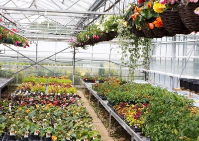 Horticulture Innovation Fund Victoria – up to $50k