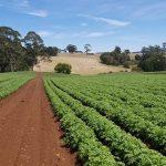 Small Farm Grant Image
