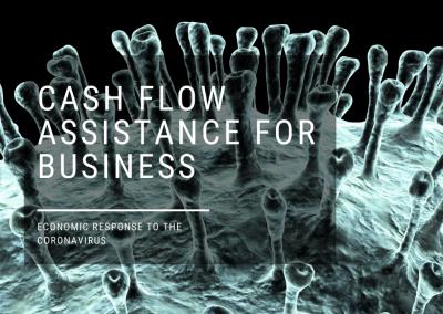 COVID19 SME Grant- Cash Flow Assistance for Business 2020